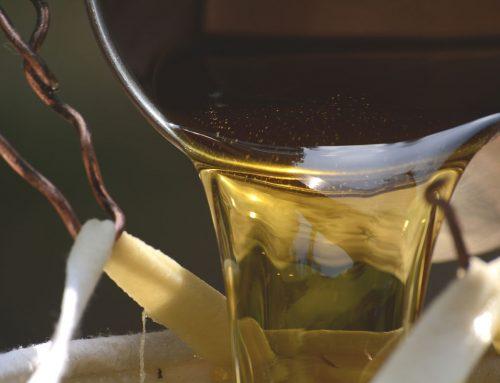 Tailam gli oli del benessere: oli ayurvedici non solo per i massaggi